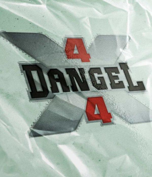 dangel logo Mockup